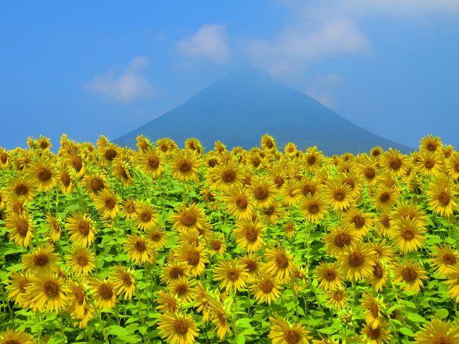 JALのマイルが溜まっていたので、「どこかにマイル」で旅行を企画!<br /><br />山形、仙台、羽田、宮崎の4つから選ばれたのは・・・宮崎空港でした!!