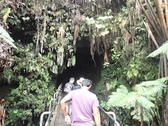 ハワイ島(16)ハワイ火山・サーストン・ラヴァ・チューブ(溶岩洞窟)
