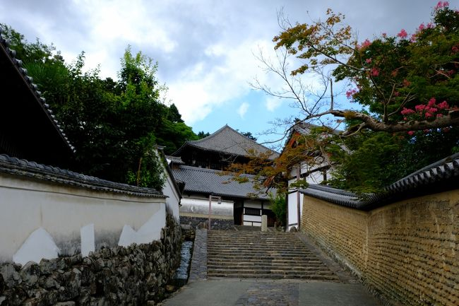 8月末が有効期限のJALクーポンを利用して日航奈良ホテルに宿泊して、夏の奈良(奈良と桜井)を楽しみました。