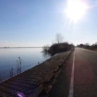 渡良瀬遊水地でバードウォッチング [2016](1) 珍鳥チフチャフ編