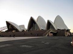シドニー旅行2日目 ~食品ロス救済マーケットにGO 懐かしのファラフェルにやっぱりオペラハウス 後編~