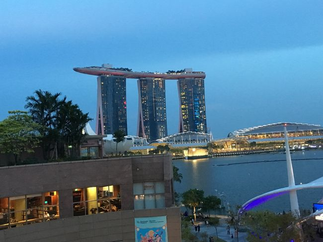 これまでは、関西空港発、シンガポール航空の深夜便で出発、早朝にシンガポール着という旅程でしたが、今回は往復とも昼間の便で行ってきました。<br />まず、航空機はB787-10という新鋭機で、エコノミーは3-3-3列。今回はラッキーなことに往復ともエコノミーの最前列の席が取れたので、足下はかなりゆっくりめ。ただし、貴重品も含めて座席の下に置くことが出来なかったのが難点でしたが、それ以外はとても快適に過ごせました。機内食は美味しいと思えないことが多かったのですが、シンガポール航空日本就航50周年記念ということで、シンガポール名物、チキンライスがとても美味しかったのです。<br />4泊5日の日程でしたが、2日目のジョホールバルへの1日観光は、トンデモもないことになってしまって。<br />でも、忘れられない思い出になりました。<br />8月3日 1日目 関西空港発SQ619 <br />         マンダリン オーチャード シンガポール<br />8月4日 2日目 ジョホールバル一日観光<br />8月5日 3日目 オーチャードの近くのエメラルドヒルのプラナカン建築<br />         の見学<br />         アートサイエンス(マリーナベイサンズ)見学<br />8月6日 4日目 アラブ人街ハジレーンストリート見学<br />         インド人街でランチ<br />         ムスタファで買い物<br />8月7日 5日目 シンガポール発SQ622