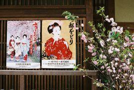 母 K子と行く京都 2007お花見