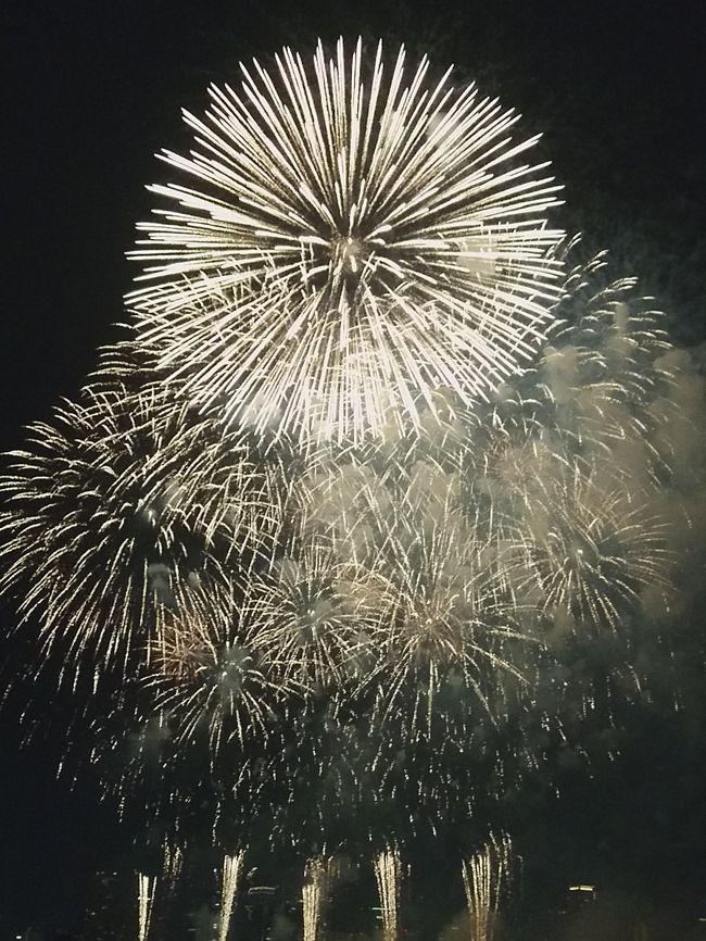 今年(2018年)で30回目となるなにわ淀川花火大会を見に行きました。<br />その体験談を詳しく紹介していきます。