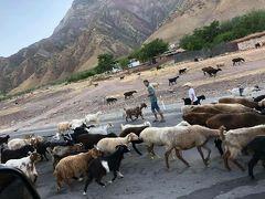 タジキスタン4日目 ドゥシャンベへ