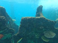 ガダルカナル島の戦争遺産めぐり(沈没船、戦車、戦闘機)【南太平洋アイランドホッピング旅】