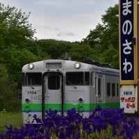 アヤメとルピナスの咲き誇る沼ノ沢駅 ~夕張支線最後の2018年夏~(北海道)