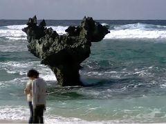 家族で初めての沖縄旅行、ホエールウォッチング欠航が残念だった