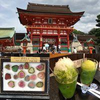 末娘と二人のんびり京都めぐり(1)ふしぎ石博物館と伏見稲荷大社そして抹茶スイーツ
