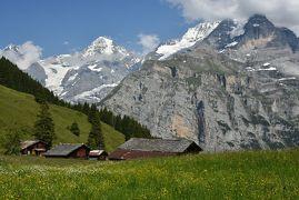 花とスイス(2)ユングフラウ周辺 <晴れ> ハ-ダ-クルム・ユングフラウヨッホ・クライネシャイデック・シルトホルン・アルメントフ-ベル・ミュ-レン ・花の谷 ハイキング