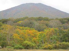 八甲田・田代平湿原の鮮やかな紅葉