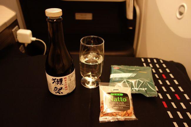 初めてのハノイ1日目:成田からJALでハノイへ