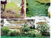 大自然を満喫!レンタカーでオマーン北部の旅�見たことのない絶景。ワディ・シャーブ
