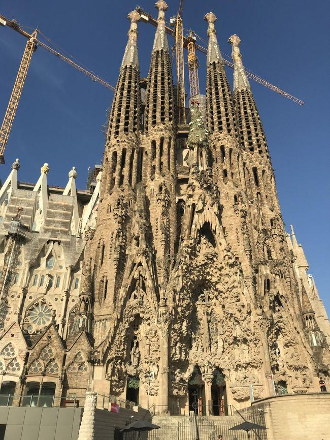 1週間のスペイン周遊<br /><br />まずはバルセロナからスタート<br />サグラダファミリア1日目は教会内部を、2日目は日本で予約しておいて塔をのぼってきました<br /><br />いつもは個人手配ですが、今回は初めての完全パッケージツアー<br />弾丸でスペインを周遊します<br /><br />バルセロナは徒歩とタクシーで観光です