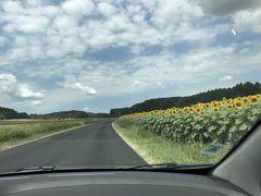 フランスでドライブ旅行2018 ⑧ロワールの古城巡りⅤ