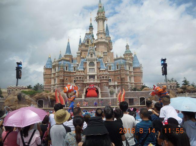 2018年の夏休みは上海へ行きました。自身初の中国本土です。<br />観光地としてはそれほど有名ではないためか、上海に行くと言うと何しに?と聞かれることが多かった上海での一番の目的は何と言っても上海ディズニー!2013年のオーランドから始まった世界のディズニーパーク制覇という目標を達成するために、ついでに観光もできればと上海に行ってきました。<br /><br />エアーとホテルに無料で空港-ホテル間の送迎がついてくる6泊7日のパッケージを楽天トラベルで手配。現地では終日フリーとしましたが、上海ディズニーチケットのみ日付指定の2Daysチケットをネットで手配していました。<br /><br />台風接近の影響も一部でありましたが、念願の全世界ディズニーコンプを達成した有意義な旅でした。<br /><br />3日目は上海ディズニーです。<br />
