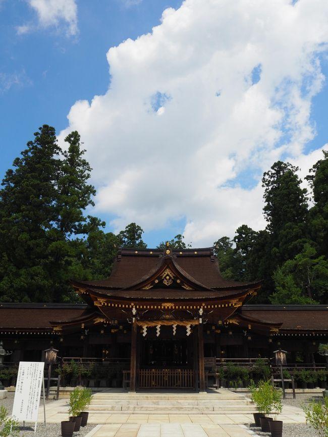 久しく滋賀を訪れていません。<br /><br />テレビ大阪、三田村邦彦さんの旅番組、「おとな旅あるき旅」で三月に放映されたのは、彦根の多賀大社。<br /><br />その時から、滋賀なら多賀大社にお参りに行こうと思っていました。<br /><br />美味しそうなパン屋さん、蕎麦屋さんなどが放送されました。<br /><br />名神高速道路を彦根ICでおりて、三田村さんの足跡を追います。<br /><br />【写真は、多賀大社の拝殿です】