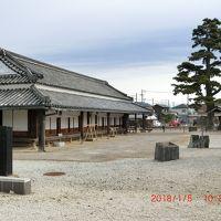 新居関所から中田島砂丘と掛川城の観光