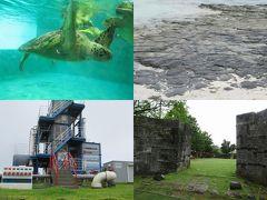 久米島と沖縄本島(13)久米島タクシー観光(前)畳石、ウミガメ館、海ぶどう養殖場、海洋深層水関連施設、琉球王朝時代の石垣