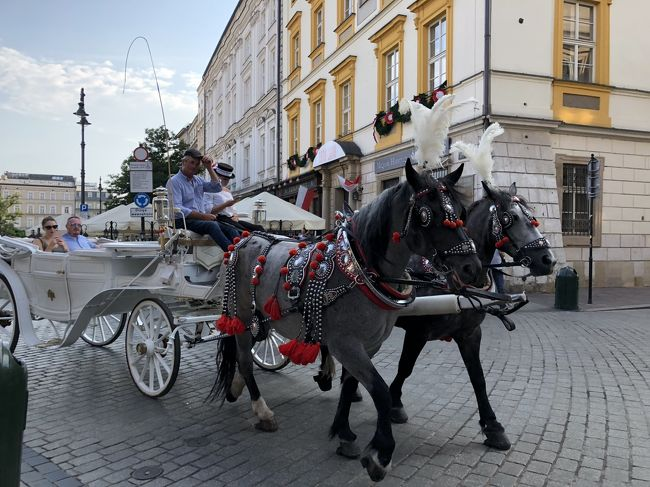ポーランドって、ちょっと暗いイメージを勝手に持ってました。<br />テレビの旅番組でポーランドのヴロツワフの小人の事を知り、急に興味を持ちました。<br />夏の旅行先を決めるにあたり、まだ行ったことが無い、夏でも涼しそうだ、大好きな旧市街がある、直行便がある、<br />などが決め手となりポーランドに決定しました。<br />バルト3国の内ラトビアとリトアニアにも(エストニアは行った事がある)足を延ばす事にしました。<br />立ち寄った街は全て想像以上に素敵な街で大満足でしたが、ヨーロッパでも異常気象なのか、涼しいはずがかなり毎日暑かったです。<br />そして、まさかのロストバゲージ!もうポーランド航空は絶対利用しない。<br />全行程   2018年   13泊15日<br />8月3日(金)品川に前泊<br />8月4日(土)成田10:15発~ワルシャワ14:25 着  15:20発~リガ17:50着      リガ泊<br />8月5日(日)リガ     リガ泊<br />8月6日(月)リガ~シャウレイ~ビリニュス    ビリニュス泊<br />8月7日(火)ビリニュス~カウナス      ビリニュス泊<br />8月8日(水)ビリニュス~トラカイ      ビリニュス泊<br />8月9日(木)ビリニュス13:40発~ワルシャワ13:45着  14;50発~クラクフ15:45着    クラクフ泊<br />8月10日(金)クラクフ      クラクフ泊<br />8月11日(土)クラクフ~ブロツワフ      ブロツワフ泊<br />8月12日(日)ブロツワフ       ブロツワフ泊<br />8月13日(月)ブロツワフ12;00発~ワルシャワ12:30着  13;45発~グダンスク14:35着  グダンスク泊<br />8月14日(火)グダンスク     グダンスク泊<br />8月15日(水)グダンスク~ワルシャワ     ワルシャワ泊<br />8月16日(木)ワルシャワ     ワルシャワ泊<br />8月17日(金)ワルシャワ15;10発~<br />8月18日(土)成田8:40着