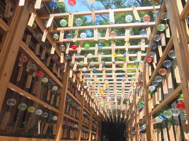 川越氷川神社で縁むすび風鈴が飾られてるというのを知り、見に行きたいな~と思い、旦那が夜勤なので1人で出かけてきました。<br />昼間とライトアップされた風鈴などを楽しんだ他...<br />夏越大祓は6月30日に行われる所が多いのですが、川越氷川神社は、行った7月31日に大祓行事が行われるようで、たまたま行った私も参列させて頂きました。<br /><br />この日も暑かったけど、川越を散策しながら御朱印巡りなどもしてきました。