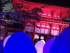 2018年8月下鴨神社 糺の森の光の祭り 先頭でしか見れない幻想的な動画とってきましたーー