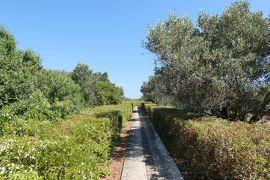 美しき南イタリア旅行♪ Vol.158(第6日)☆Capo Colonna:古代ギリシャ遺跡の岬「カポコロンナ」夏の庭園と廃墟♪