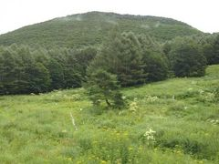 嬬恋山歩き〈村上山〉登山