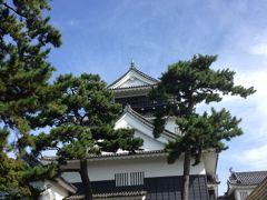岡崎城攻め