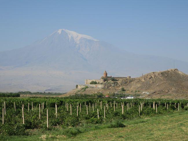 エレヴァンを出て一路南下、トルコとの国境近くまで行く。ここも広大な平地で、農業国であることが分かる。一部ビニールハウスもあるが、季節利用にとどまっているとのこと。途中から、大アララト山(5165m)と小アララト山(3925m)が、見え始めた。大アララト山には、残雪が頂上付近に少し残っていた。ホルビラップ修道院から見る山は大変雄大である。修道院下には、すぐにトルコとの国境線がみえ、これを境にして民族戦争が起きる様を想像した。<br />エミチアジン大聖堂に向かう途中の緑多いところは、コウノトリが生息しているところだそうだ。電柱の上の巣を一つ見つけたが、写真には取れなかった。この大聖堂は、アルメニア使徒教会の総本山だそうで、参拝に来る人が多い。117年に設立された歴史あるもので、その当時はアルメニアの首都であった。大変簡素な石造りの聖堂である。大聖堂の中は、修理中ですべてを見ることはできなかった。博物館には数多くの書物、装飾品などが飾られていた。歴史を感ずるものばかりである。当時の出版物も飾られていた。人類の歴史素晴らしい。入り口付近には、Museum Shopがあり、教会に関連するもの、産物に関するものなど豊富にものがあった。ここでも小さなザクロのキーホルダーがあり、お土産とした。近くのレストランで昼食をとる。暑いのでローカルビールのKilikiaを飲む。おいしかったのは、ひよこ豆、キノコ、鳥を炒めたものに、ラバッシュを揚げたものを混ぜ合わせて食べるローカルフードである。大変ラバッシュがカリカリしてさっぱり目で大好評であった。デザートには、スポンジケーキに粉砂糖がかかったもので、誰かにコインが入っているので、その人があたりということである。みんな目の色を変えて中を割って確認していた。私ケーキの底にコインがあり、アルメニア語がかかれたボールペンが当たる。ラッキー<br />食後移動して、ズヴァルトノツ教会が建てられたところで、高さ45mの円形3階建ての壮大な教会だそうだ。10世紀の大地震により崩壊したが、世界遺産に登録されているが、完全修復には至っていない。同じ材質、同じ組み合わせで復元することが義務付けられている。<br />続いてエレブニ要塞を見学。小高い丘の上に一部が復元されている。大変見晴らしの良い場所である。ここがエレヴァンの発祥の地といわれている。このような遺跡がまだ眠っているような気がする地形である。アルメニア歴史博物館へ行き、いろいろな歴史的いわれのある展示物を見学。研究すればするほど、奥の深いものである。<br />次は、アルメニアといえば、コニャックで有名である。二つの会社があるが、我々は、ARARATコニャック工場を見学。入り口を入って、ガイドさんの説明を聞きながら、そしてほのかに甘い匂いのするコニャックを鼻で吸い込みながら、説明を聞く。歴史的な貯蔵と、ブレンドしながら、年代を決めていくすべは、味に基づくものであった。見学の最後は、テ―スティングで、二つの年代(3年物と10年物)の異なるコニャックが試飲できた。やはり10年物はまろやかで、奥が深い。ワインも買ってしまったので、コニャックは、小瓶の6,7,10年物のセットを購入。チョコチップと一緒に飲むと、おいしさ倍増なので、それも購入。アルメニアのコニャックもコニャックと名乗ることができるようになったので、世界に販路が拡大しているそうだ。日本にも輸出されている。<br />夜は、Kilikia地方料理を満喫。といってもコースメニューは今までとそれほど変わらない。ナスを輪切りにして、油で炒めたものを二枚重ねて、ヨーグルトをはさんだシンプルな味の料理。夜のとばりとともにホテルに帰着。