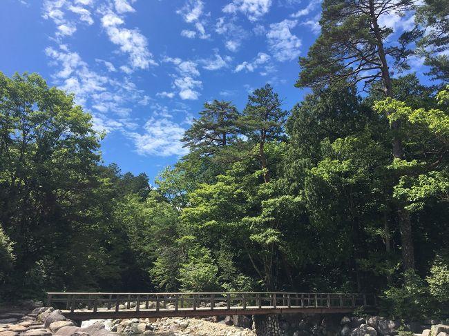 環境省が「日本一星空が綺麗な村」と認定した阿智村。ちょっと気にはなっていたけど、自力で行くには少々面倒。ということで、「日本一の星空観賞と爽やか信州3大絶景遊覧」というタイトルに魅かれ、手っ取り早くバスツアーに参加しました。<br /><br />お天気に全てがかかっているこの旅行。結果はいかに?