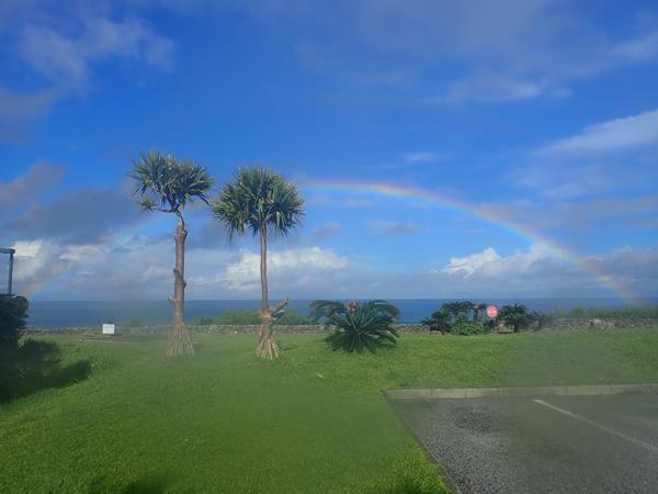 久米島と沖縄本島(20)2日連続の慶良間諸島ダイビング。チービシ・ナガンヌ島にも寄って渡嘉敷島、座間味島へ