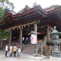 神戸発ジャンボフェリーで行く0泊2日弾丸香川の旅