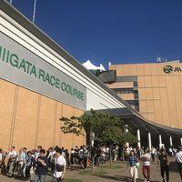 夏の甲子園100回大会を観に大阪へ 〜ちょっと寄り道新潟編