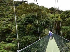 コスタリカを巡る!幻の鳥、蝶、バジリスク、ウミガメの産卵と子亀の誕生、熱帯雨林トレッキング、ボートクルーズ、温泉、様々な生物と自然探訪に、おまけにストバリケード突破までついて、コスタリカの豊かさを満喫 vol④恐怖の吊り橋と熱帯雲霧林