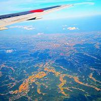 JAL670便 千葉県上空・管制待ち旋回中 ☆幕張メッセ・TDR・ゲートブリッジも鳥瞰