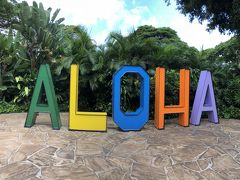 Summer Vacation 2018 in Maui & Oahu. マウイ島でのんびりステイ & オアフではハリケーン騒動!① マウイ編前半