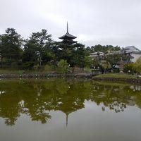 そうだ奈良へ行こう!・・夕暮れの奈良公園を散策+「奈良草鍋」を食す♪