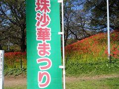 9/19 埼玉県 権現堂の彼岸花
