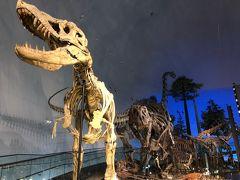 福井県立恐竜博物館と東尋坊