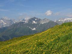 花とスイス(3)ユングフラウ周辺 <晴れのち曇り> メンリッヒェン・トリュンメルバッハの滝・ブリエンツ・ロートホルン鉄道・ブリエンツ湖遊覧船