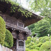 等覚院 つづじ寺の夏の緑を拝見。 山門より眺める景色に感嘆