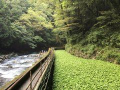 箱根・中伊豆へのドライブ旅行
