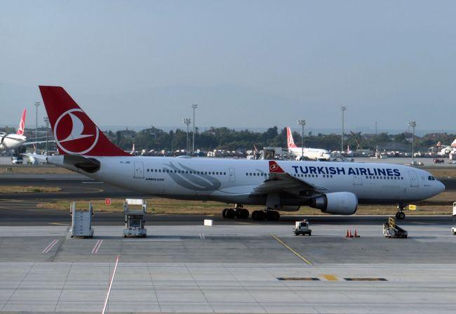 トルコのイスタンブールと南イタリアの観光で、トルコ航空を利用しました。6月中旬の都合の良い時期に、運良くマイレージ利用のビジネス席チケットを入手することができました。トルコ航空利用は初めてです。夕の9時過ぎに成田空港を出発すると、イスタンブールに午前3時半頃に到着する便(TK53便)です。ホテルチェックインにも観光にも早すぎる時間の到着ですので、イスタンブール空港にあるトルコ航空のアライバルラウンジで過ごし、午前9時過ぎからイスタンブール観光をスタートすることにしました。<br /><br />イスタンブールで4泊後、イタリアのナポリにトルコ航空で移動します。午前便での移動で、昼過ぎからナポリを起点に南イタリアをレンタカードライブで観光する予定です。トルコ航空ビジネスは食事等の評判も良いので、搭乗体験を楽しみに出発しました。