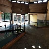 11.甥っ子と温泉に入る2泊 畑毛温泉大仙家 和室2部屋 大仙湯・韮山湯の二つの源泉の大浴場
