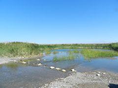 カザフスタン・バルハシ湖北岸紀行 その12 橋のないアヤグズ川を越えて