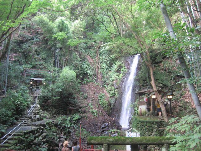 午前中に<br />https://4travel.jp/travelogue/11404791<br />で真鶴岬をお散歩した後、真鶴から1駅東海道線に乗って、湯河原にやって来ました。このところちょっと疲れ気味だったので、温泉に入りに来ましたが、それだけでも何なんで、ちょっとぶらぶら。真鶴と湯河原を歩いて、この日は31,033歩のお散歩です。<br /><br />【表紙の写真】不動滝<br />