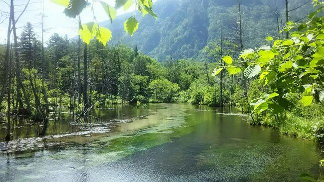 7月から暑い日が続いたので、もう耐えられない。<br />高原に行きたいと母を誘って、白馬と上高地に行ってきました。<br /><br />ただ、栂池高原でも暑かった……。