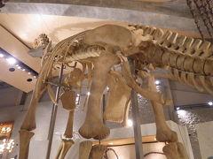 群馬の巨大な恐竜に大興奮!!!