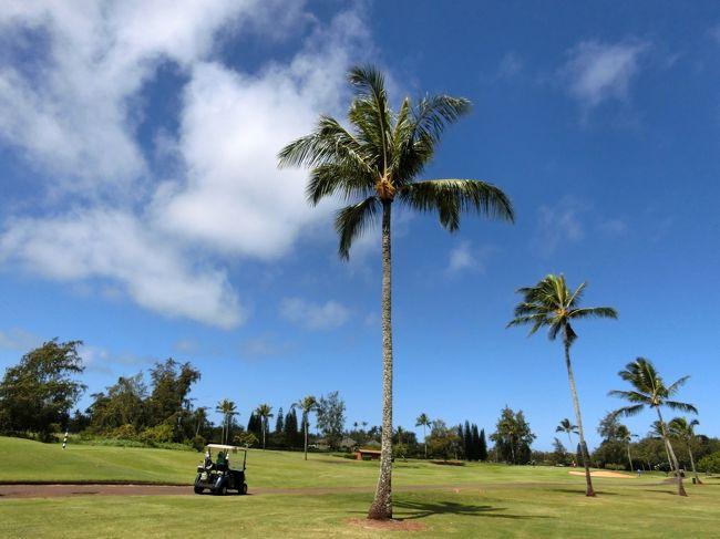 今年はどこに旅行に出かけようか迷っているうちに7月になり、結局今年もハワイに行くことになりました。<br /><br />アウラニの8泊は確保出来ましたが、残り2泊はワイキキに。<br />HISでデルタ航空のフライトとワキキキ・バニアン2泊、アラモのレンタカー予約を行い、カトウゴルフで4ラウンドのゴルフ予約。<br /><br />21時発のフライトでハワイに飛び立ち、1日目はアラモアナショッピングセンターに行った後、ドンキホーテに初めて行き、ランチを食べポケも購入しました。<br /><br />アウラニでチェックインを済ませ、カポレイのターゲット・ダウントゥアースで食料品を購入。<br /><br />2日目は、午前中はタートルベイGCでラウンド。<br />お昼は、いつものフリフリチキンに加え、スプラウトサンドも食べ、シェイブアイスもいただきました。<br /><br />HISで予約した飛行機3人分とバニアン2泊分が合計で285,910円。<br />内訳は飛行機代245,310円(諸経費税込)、バニアン40,600円。<br />ホテルとセットだったので飛行機代は通常より12,940円割引でした。<br /><br />アウラニはDVCのポイントを372ポイント使用。